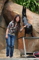 2012-06 Encounter with Yeni the Sea Lion